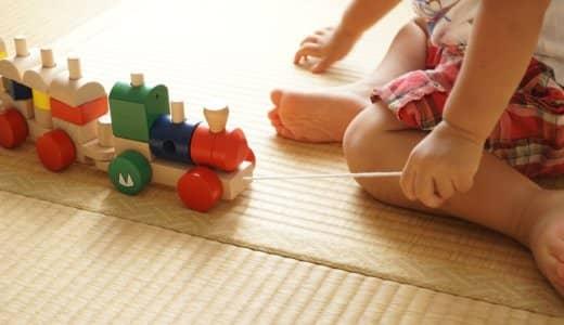 畳にカビが!!家にあるもので簡単に除去&予防の備忘録